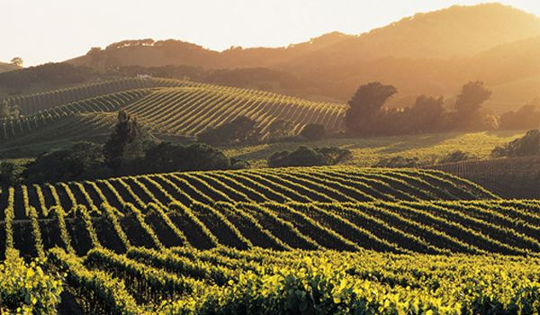 6_napa_california